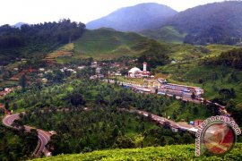 Disbudpar Bogor: Kawasan Puncak masih bercitra negatif