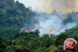 Kotabaru Darurat Kebakaran Lahan
