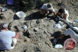 Dinosaurus Pemakan Daging Jenis Baru Ditemukan di Venezuela