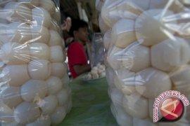 Tim Gabungan Berpatroli Cegah Pencurian Telur Penyu