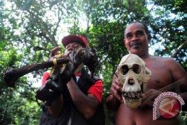 2 Warga Pontianak Tersangka Pembunuhan Orangutan