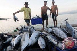 Menteri Kelautan: Terjadi Indikasi Populasi Ikan Tuna Turun