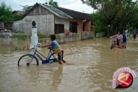 Flooding submerges Meulaboh, West Aceh, causes damage to 42 homes