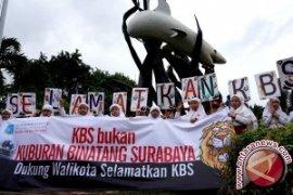 Lagi, Satwa Koleksi Kebun Binatang Surabaya Mati