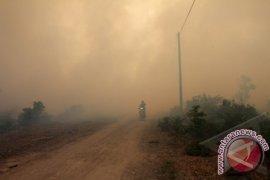 Petugas padamkan lahan gambut terbakar di Singkil