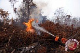 Polda Riau tetapkan 66 tersangka pembakar lahan
