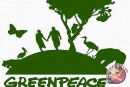 Greenpeace Cegah Pengrusakan Hutan