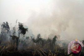 Kementan Antisipasi Ancaman El Nino di Indonesia