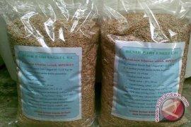 Dinas Pertanian Bekasi memberikan bantuan benih padi