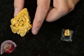 Polisi Denpasar tangkap pelaku kasus penggelapan emas Rp195 juta