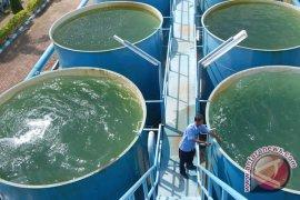 PDAM Tirta Musi Palembang bebaskan tagihan air dua bulan