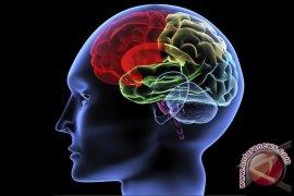 Kekuatan 10 Menit Olahraga Untuk Otak