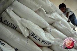 Stok gula distributor Babel cukup tujuh bulan