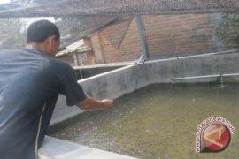 Disperindag Latih 20 IKM Buat Pakan Ikan
