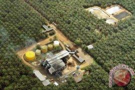 Menteri ESDM dorong minyak sawit untuk listrik