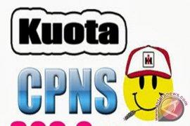 BKD Banjarmasin Pastikan Belum Ada Penerimaan CPNSD