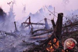 Delapan Posko Penanganan Asap Kebakaran