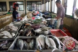 KKP Launching Prototype Gerobak Ikan Higienis