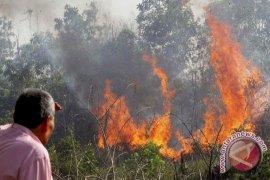 Edukasi Warga, Minimalkan Kebakaran Hutan