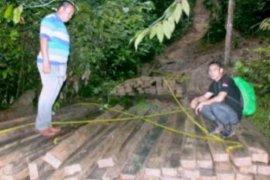 Kasus Pembalakan Hutan Gunung Pejapak Tetap Diproses