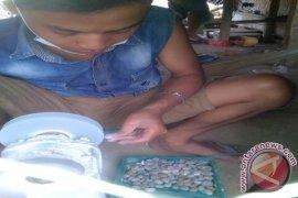 Batu akik Sagaranten Sukabumi kuasai pasar mancanegara
