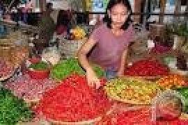 Banten Tetapkan Cabai Dan Bawang Komoditas Unggulan