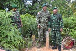 Patroli patok perbatasan Indonesia-Malaysia Page 1 Small