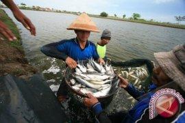 Kotabaru proposes to build a fishery school