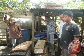 Petani Ketapang Jalin Kerja Sama dengan Pabrik Karet