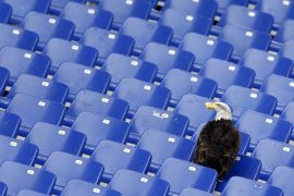 Presiden Serie A ingin Liga Italia dihadiri penonton