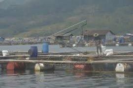 PJT-Pemkab Purwakarta Sepakat Tertibkan Jaring Apung Jatiluhur