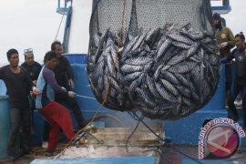 HNSI Minta DKP Pangkalpinang Tertibkan Kapal Cantrang