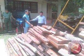 Dishut Jambi amankan 27 meter kubik kayu ilegal