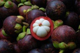 China Izinkan Indonesia Ekspor Manggis