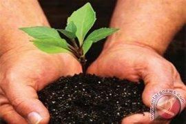Bupati Ajak Generasi Muda Budayakan Menanam Pohon