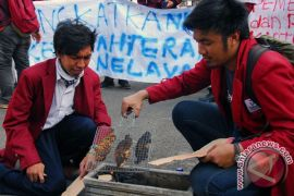 DKP:  kesejahteraan nelayan Malut semakin membaik