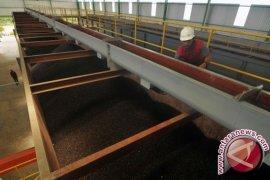 Pekanbaru tawarkan investasi pabrik sawit Rp28 triliun