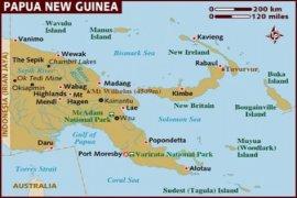 Flu babi Afrika menyebar cepat di  Papua Nugini