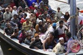 Orang kaya Mesir berunding beli dua pulau bagi pengungsi