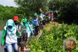 Ribuan Pelajar-Masyarakat Tanam Mangrove Di Pesisir Karawang