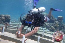 Rp35 Juta Dolar AS Untuk Konservasi Laut Indonesia