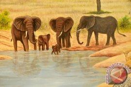 Seorang tewas akibat serangan gajah liar