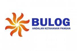Untuk bencana alam, Bulog gelontorkan 120 ton cadangan beras