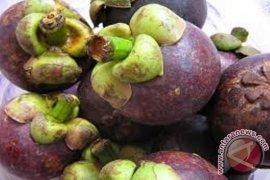 Importir China: manggis Bali lebih manis