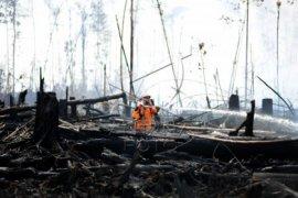 Dinas KPPK Siapkan Tim Antisipasi Kebakaran Lahan