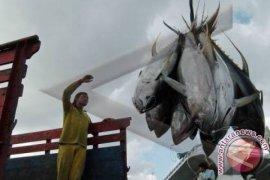 Bali's exports of fish and shrimps up 34.44 percent