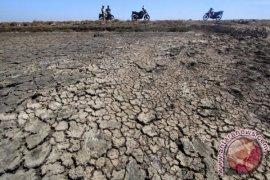 EL Nino dan antisipasi kekeringan di Indonesia
