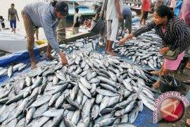 Tuna Beri 16,16 Persen  Terhadap Ekspor  Bali