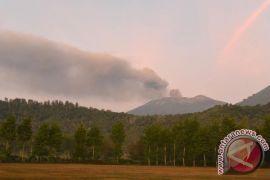 Interval letusan Gunung Raung diperkirakan 1,2 - 2,5 tahun