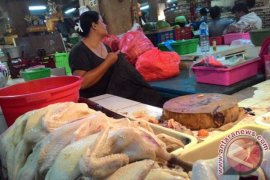 Pemerintah jamin harga ayam stabil di Bali